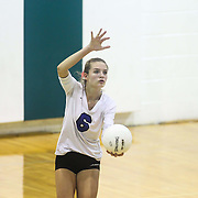 Charter outside hitter Madeline Matheny (6) attempts to serve during the 2nd Round of the 2015 DIAA Girls Volleyball Tournament Saturday, Nov. 07, 2015 at Archmere Academy in Claymont.