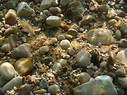 Beach Pebbles Underwater, Lake Michigan