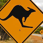 Kangaroo crossing, orange yellow highway sign, Western Australia