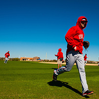 Washington Nationals outfielder Bryce Harper works out with his team during Spring Training at Space Coast Stadium training facility in Viera, Fla., Sunday, February 17, 2013.  (PHOTO / CHIP LITHERLAND)