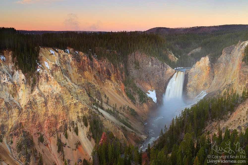 Lower Yellowstone Falls seems to glow in the first light of day as it empties into the Grand Canyon of Yellowstone. The Yellowstone River drops 308 feet (98 meters) at Lower Yellowstone Falls; the upper waterfall is roughly one-third the size. It is the largest volume waterfall in the Rocky Mountains of the United States.