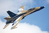 2009 Wings & Wheels Airshow - St. Thomas, Ontario, Canada