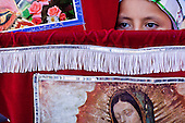 Virgin Of Guadalupe Procession