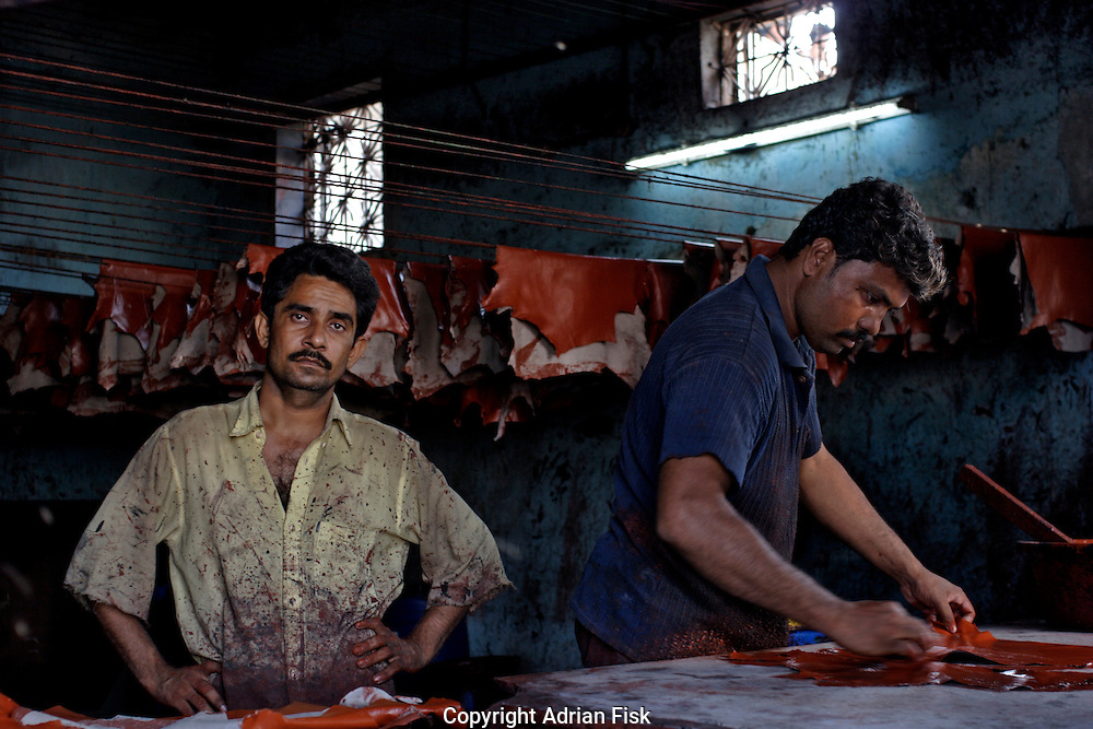 Men work at tanning goat skins on 21st Oct 2006. Dharavi, Asia's largest slum houses a million people and is home to 5000 one room industries that generate an estimated $800 - a Billion dollars a year.
