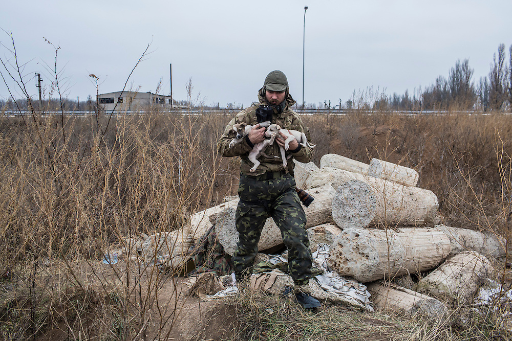 PERVOMAISKE, UKRAINE - NOVEMBER 17, 2014: Grigoriy Matyash, a member of the 5th platoon of the Dnipro-1 brigade, a pro-Ukraine militia, with two of the puppies born near their post underneath a bridge in Pervomaiske, Ukraine. CREDIT: Brendan Hoffman for The New York Times