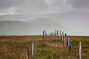 Fence descending Benbrack in the Galloway Hills, Southern Uplands, Scotland.