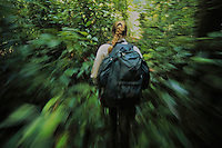 Ornagutan researcher Cheryl Knott hikes through the lowland rain forest in Gunung Palung National Park, Borneo.
