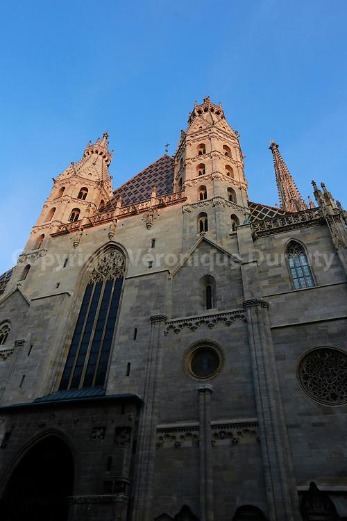 Stephansdom, Vienna Cathedral, Austria // Stephansdom, cathedrale St Etienne, Vienne, Autriche