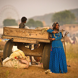 Subita Devi, 13 wakes up at the world's largest annual cattle fair in the desert town of Pushkar, in the Indian state of Rajasthan. Every year thousands of camel herders from the semi-nomadic Rabari tribe, who make a living rearing animals, travel for two to three weeks across 500 kilometers to set up camp in the desert dunes near Pushkar to sell their livestock. The herders sell more than 20,000 camels, horses and other animals at the annual cattle fair.