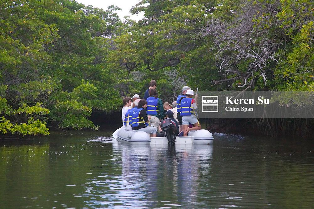 Tourists riding on kayak through jungle and waterway, Galapagos Islands, Ecuador