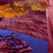Chinle Wash runs through Canyon de Chelly National Monument on the Navajo Reservation in Arizona. .