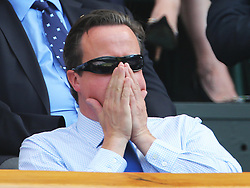 David Cameron and Alex Salmond in the Royal Box  for the Men's Final at the Wimbledon Tennis Championships in  London, Sunday, 7th July 2013<br /> Picture by Stephen Lock / i-Images