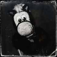 Sep 29, 2014; Auburn Hills, MI, USA;  (Editor's Note: Photo was post-processed creating a digital tintype) Detroit Pistons mascot Hooper during media day at the Pistons practice facility. Mandatory Credit: Rick Osentoski-USA TODAY Sports