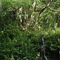 A sculpture in the Brookgreen Gardens in Murrells Inlet, SC. Photographed 8/30/08