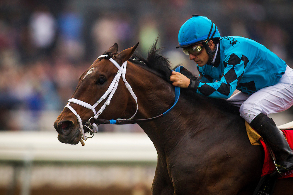 February 07 2015: Finnegans Wake with Victor Espinoza up wins The San Marcos Stakes at Santa Anita Park in Arcadia CA. Alex Evers/ESW/CSM`
