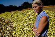 Toni Scully owner of the Scully Packing Company in Finley, CA becomes emotional as she stands next to piles of rotting pears on Tuesday, September 12, 2006. The plant typically discards less than a truckload a season, while this season Ð due to a lack of laborers Ð they're discarding 4-6 truckloads per day. Stepped-up border enforcement has led to a shortage of migrant labor which has left much of the pear crop rotting on the tree and ground in Lake County.