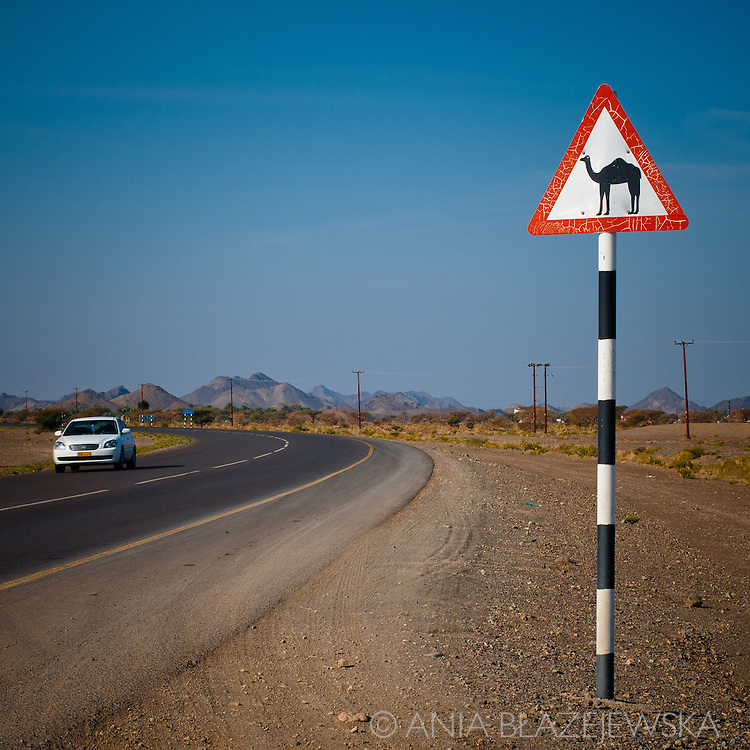 """Oman. """"Camels on the road"""" warning."""