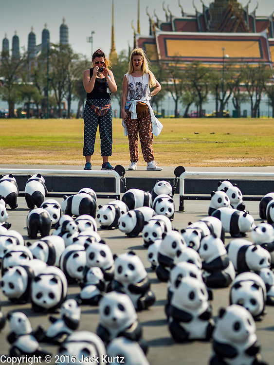 """04 MARCH 2016 - BANGKOK, THAILAND: Tourists take pictures of the """"1600 Pandas+ World Tour in Thailand: For the World We Live In and the Ones We Love"""" exhibit on Sanam Luang in Bangkok. The 1600 paper maché pandas, an art installation by French artist Paulo Grangeon will travel across Bangkok and parts of central Thailand for the next week and then will be displayed at Central Embassy, a Bangkok shopping mall, until April 10. The display of pandas in Thailand is benefitting World Wide Fund for Nature - Thailand and is sponsored by Central Embassy with assistance from the Tourism Authority of Thailand and Bangkok Metropolitan Administration and curated by AllRightsReserved Ltd.     PHOTO BY JACK KURTZ"""