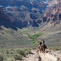 On the trail to Plateau point with Indian garden in the background