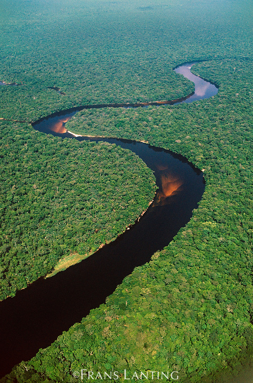 Tributary of the Congo River (aerial), D.R. Congo