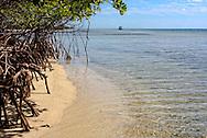Beach in Cayos Ana Maria, Ciego de Avila, Cuba.