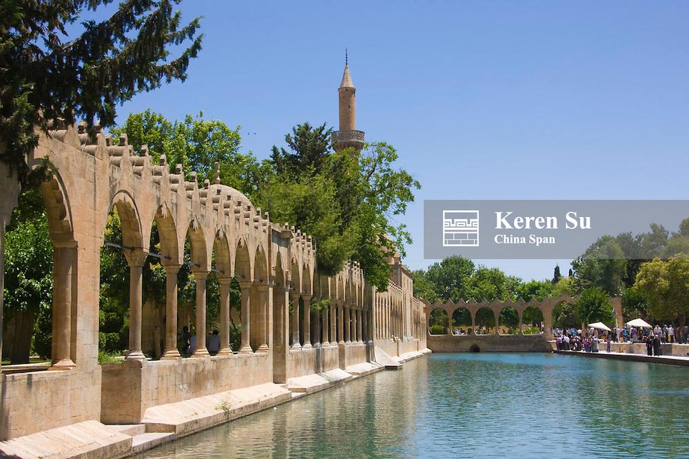 Halil Rahman Mosque and Pool of Sacred Fish, Sanliurfa, Turkey