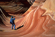 """The Wave, Coyote Buttes, located on the Arizona side of Paria Canyon-Vermilion Cliffs Wilderness Area, which is public land managed by the United States BLM. Over 190 million years, ancient sand dune layers calcified into rock and created """"The Wave."""" Iron oxides bled through this Jurassic-age Navajo sandstone to create the salmon color. Hematite and goethite added yellows, oranges, browns and purples. Over thousands of years, water cut through the ridge above and exposed a channel that was further scoured by windblown sand into the smooth curves that today look like ocean swells and waves. For the permit required to hike to """"The Wave"""", contact the US Bureau of Land Management (BLM), who limits access to protect this fragile geologic formation."""