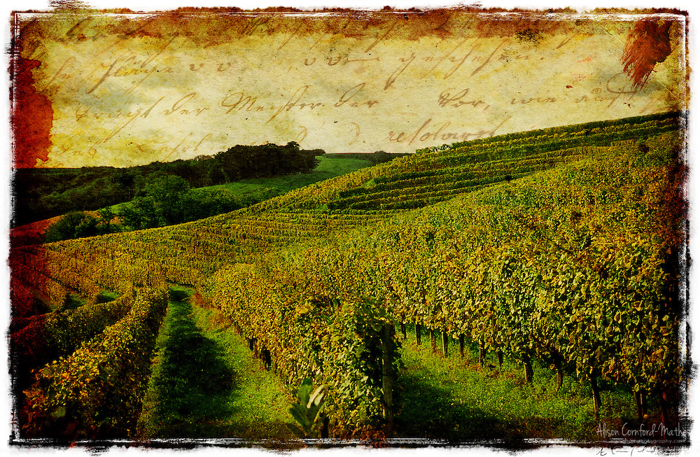 French Vineyard, Monein, France - Forgotten Postcard digital art European Travel collage