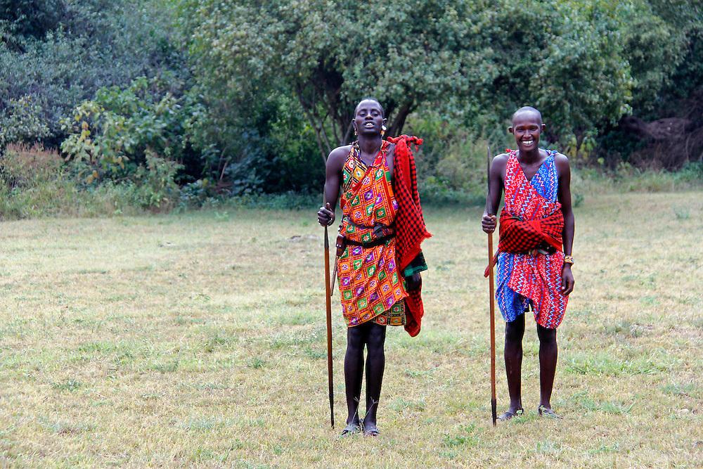 Africa, Kenya, Masai Mara. Maasai Warriors demonstrates hunting and archery skills for visitors to Cottar's 1920's safari Camp.