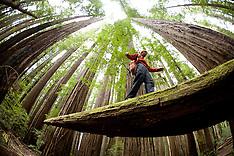 US National Parks Photos -Highlights - Fine art prints, photographs, National Park stock photography