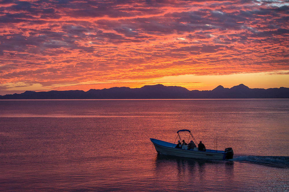 Panga heading out for whale watching in the Sea of Cortez at sunrise, Loreto, Baja California Sur, Mexico.