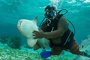 Nurse Shark (Ginglymostoma cirratum) &amp; Guide<br /> Shark Ray Alley<br /> Hol Chan Marine Reserve<br /> near Ambergris Caye and Caye Caulker<br /> Belize<br /> Central America<br /> UNETHICAL HANDLING, ILLEGAL