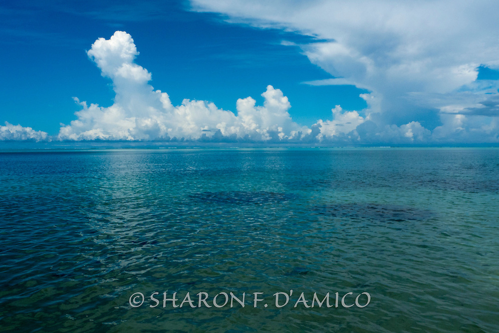 View from Water's Edge, Huahine Iti, French Polynesia, Series: Horizons