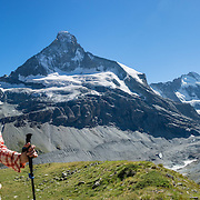 The Matterhorn (4478 m/14,692 ft) rises above Zmutt Valley. From Zermatt, hike the scenic Höhbalmen Höhenweg loop via Bergrestaurant Edelweiss, Trift Hut and Zmutt, in the Pennine Alps, Switzerland, Europe. With delightful views of alpine meadows, peaks and glaciers, this strenuous walk went up and down 1200 meters over 21.6 km (13.4 miles). This image was stitched from multiple overlapping photos.
