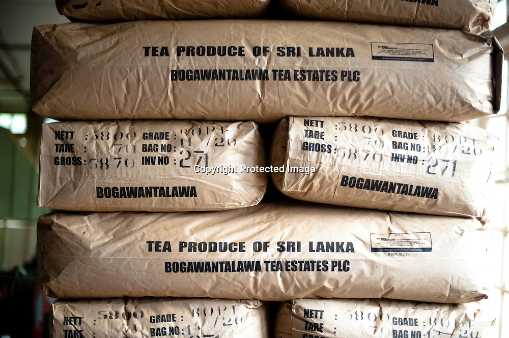 Freshly processed tea sits packaged for auction at the plant of the Bogawantalawa Tea Estates near the town of Hatton in central Sri Lanka December 13, 2009. Tea is sampled similar to wine in that it is swished around in the mouth to get the full taste and then spit out. After being picked leaves are wilted overnight then dried and ground with in 24 hours to produce tea for auction.