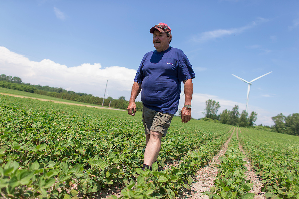 Farmer Arpad Pasztor walks in his field of soybeans overlooking lake Erie near Port Burwell, Ontario, Wednesday,  July 2, 2014.<br /> Farmers Forum/ Geoff Robins