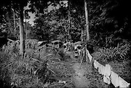 The Batek Negritos of Kuala Koh, hang laundry on the perimeter wire, which was supposed to be electrified to ward of elephants, erected by the palm oil plantation that has clear-cut their traditional ancestral land.  Kelantan, Malaysia.  One concession that HR Plantation Sdn. Bhd., which has leased the land from the state, has made is not to electrify the fence that runs through their settlement on the edge of the Taman Negara National Park.  (The Batek are forbidden from conducting traditional sustanence activities, like hunting and gathering, within the boundaries of the Taman Negara, which for was their ancestral land for perhaps 20,000 years or more.)