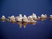 salt formation at the Dead Sea, Israel