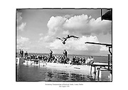 Swimming Championships at Blackrock Baths, County Dublin.<br /> <br /> 2nd August 1958<br /> <br /> 02/08/1958