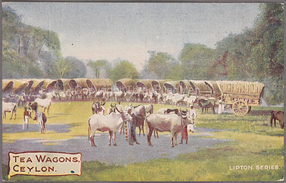 Tea Wagons, Ceylon. Lipton Series.