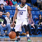 Reno Bighorns Guard Tajuan Porter (12) dribbles the ball near the top key in the second half of a NBA D-league regular season basketball game between the Delaware 87ers and the Reno Bighorns (Sacramento Kings), Tuesday, Feb. 10, 2015 at The Bob Carpenter Sports Convocation Center in Newark, DEL