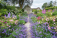 June at Wollerton Old Hall Garden