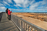 Tourists watching fur seals from boardwalk, Cape Cross, Namibia