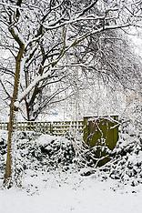 2013-01-21_Snow Sheffield