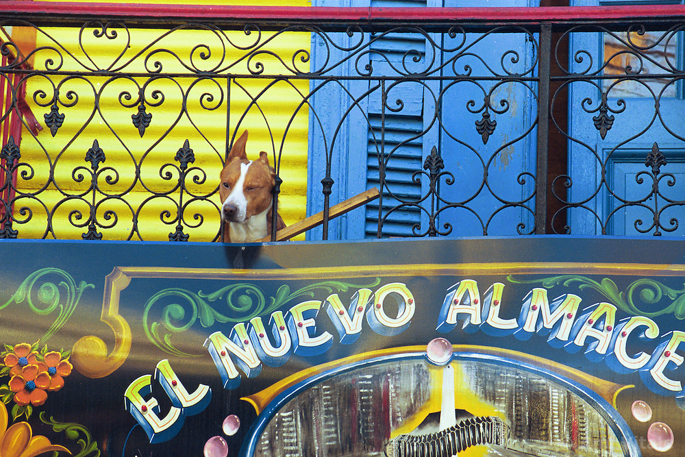 BUENOS AIRES, ARGENTINA: Daily life in Buenos Aires, Argentina. (Photo by Ami Vitale)
