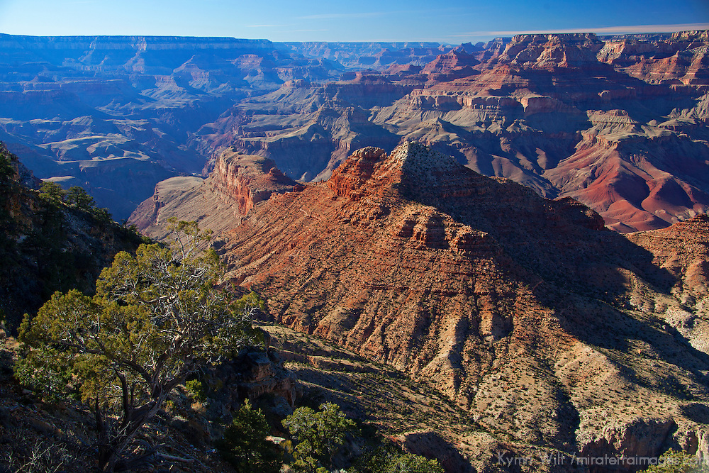 USA, Arizona, Grand Canyon. Grand Canyon South Rim vista.