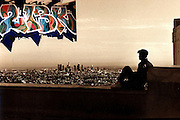 View from the Observatory in Los Angeles, CA & 213 mural