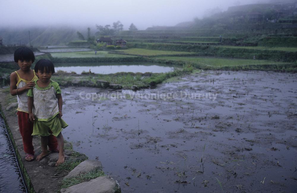 KALINGA LITTLE GIRLS NEAR THE RICE FIELDS, LUZON ISLAND, THE PHILIPPINES