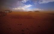 Dust storm in Boulia in Queensland. Copyright Martine Perret