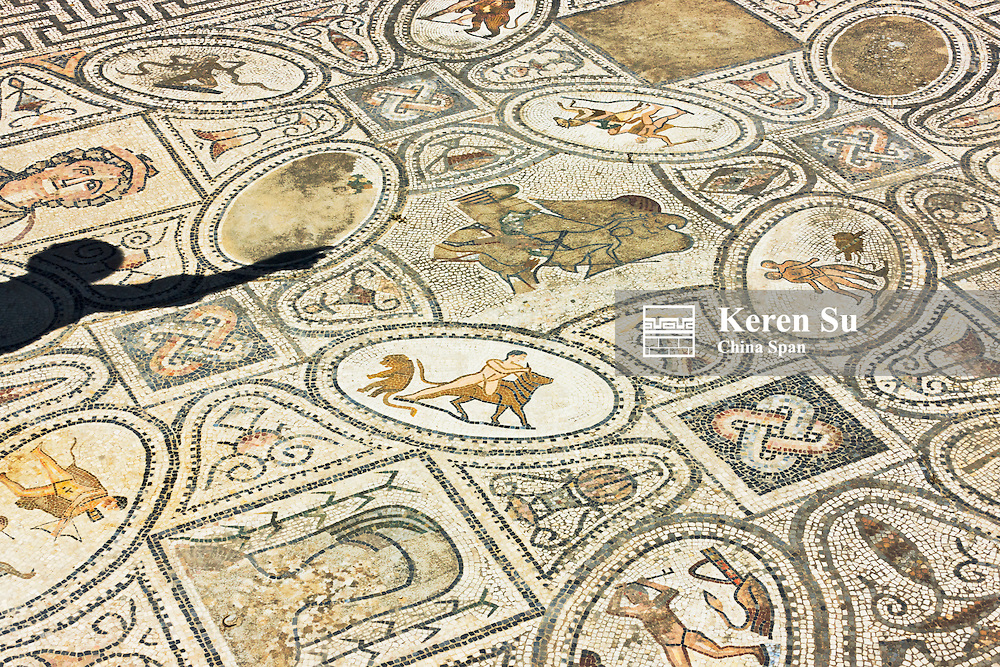 Mosaic on the floor, Roman ruins, listed as World Heritage site by UNESCO, Volubilis, Morocco